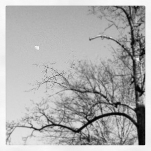 Moonshot BW